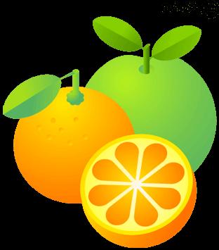 ألألوان  : البرتقالي والأخضر