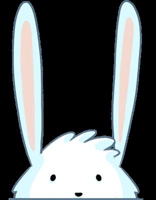 أرنب أبيض